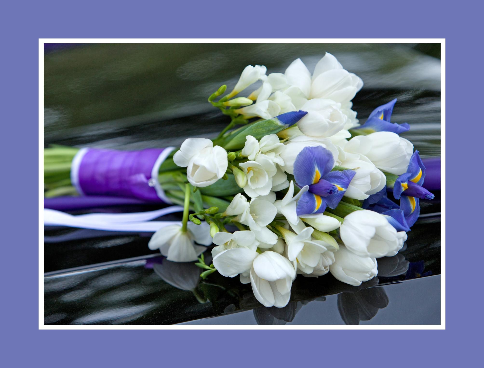 Blumenstrauß aus weißen Freesien und lila Veilchen
